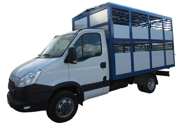 Allestimento autocarro Daily per trasporto animali  - foto 1