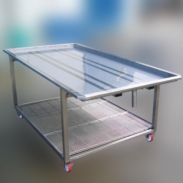 Bruno acciai tavolo a carrello in acciaio inox for Tavolo 40x40